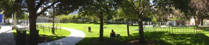 Buena Vista park in San Francisco.